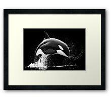 Black Bow Framed Print