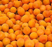 Fresh Organic Apricots  by Kuzeytac
