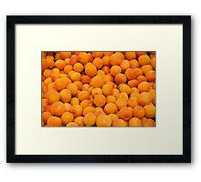 Fresh Organic Apricots  Framed Print
