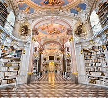 Inside the abbey library of Admont by Delfino