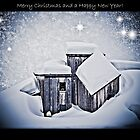 Merry Christmas and a Happy New Year by Photonook