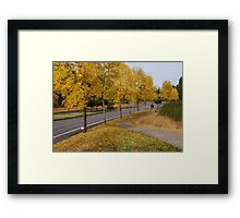 Neighborhood walk Framed Print
