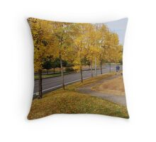 Neighborhood walk Throw Pillow