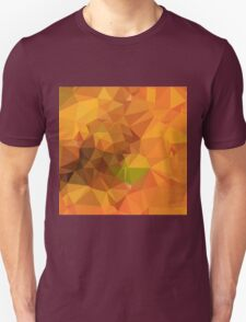 Deep Carrot Orange Abstract Low Polygon Background T-Shirt