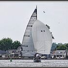 Leaving Port on Sodus Bay by Mikell Herrick
