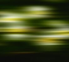 Green & Yellow by Phillip Shannon