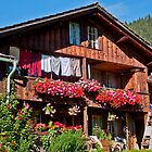 Red geraniums and laundry in an old wooden farmhouse in Grindelwald by Michael Brewer