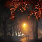 Evening Stroll by Igor Zenin