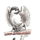Sketch -- Mythological House Griffin, Chickadee Variety by Stephanie Smith