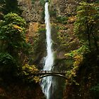 Multnomah Falls by Seth LaGrange