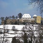 Lenzburg Castle in the snow 2 by Michael Brewer