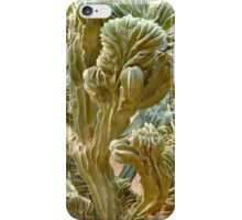 Cactus cover iPhone Case/Skin
