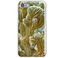 Cactus cover iPhone Case/Skin