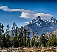 Teton Beauty by Robert H Carney