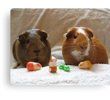 Piggie Playtime Canvas Print