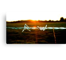 Barbed wire in the evening Canvas Print