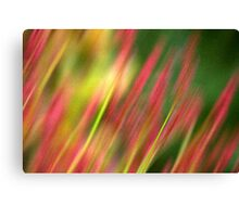 Pink & Green floral Canvas Print