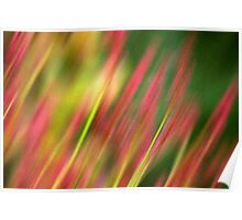 Pink & Green floral Poster