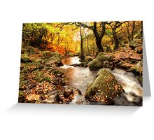 Padley Gorge Greeting Card