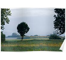 Morning light over the marshes Poster