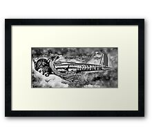 Is it a Bird is it a Plane No its Romney. Framed Print