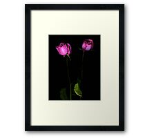 Two Roses Framed Print