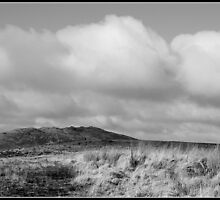 The highest point in Cornwall - Brown Willy! by smurfington