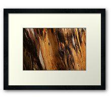 Log 3555 Framed Print
