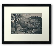 If You Get Lonely Framed Print