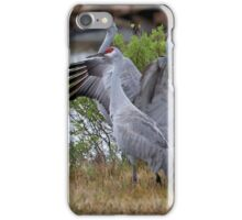 The Sandhills Are Back iPhone Case/Skin