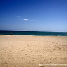 Sunny Beach by erison103