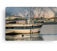 Old Boat and Wildlife, Moro Bay Canvas Print