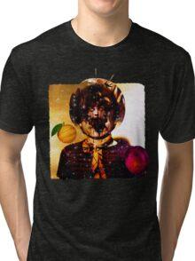 Astronomy Domine Tri-blend T-Shirt