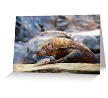 Komodo Dragon Greeting Card