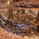 Hobble Creek Reflection by Bill D. Bell