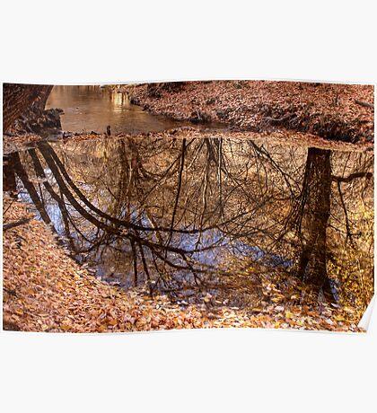 Hobble Creek Reflection Poster