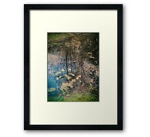 Fish Trap Creek Framed Print