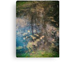 Fish Trap Creek Canvas Print