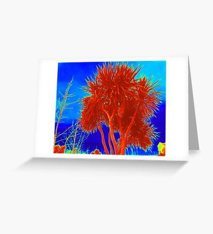 Rare Red Irish Palm Tree Greeting Card