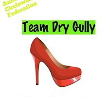 Australian Circlework Federation Team Dry Gully by aughtie