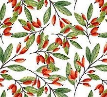 Red berries by JuliaBadeeva