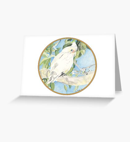 Corella, Birds of Hepburn, 2012 Greeting Card