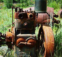 Rusty Equipment - Custer, Idaho by CADavis
