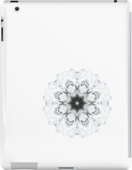 Winter flower ipad case by Agnes McGuinness