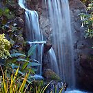 Waterfall by zzsuzsa