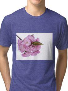 Spring Blossom Tri-blend T-Shirt