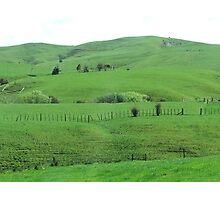 Green Hills Photographic Print