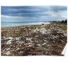 Maunganui beach Poster