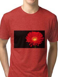 Red Gerbera Daisy Tri-blend T-Shirt