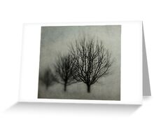 Winters Solitude Greeting Card